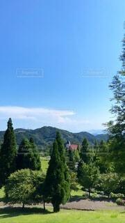 自然,風景,空,屋外,緑,雲,山,草,樹木,草木