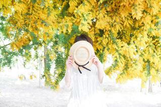 花,アクセサリー,屋外,黄色,樹木,人,絵画