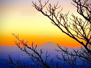 自然,風景,空,富士山,屋外,夕暮れ,紫,山,オレンジ,樹木