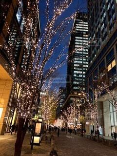 空,建物,屋外,イルミネーション,都会,高層ビル,クリスマス,明るい,ダウンタウン,クリスマス ツリー