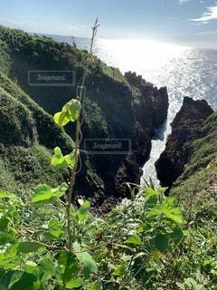 自然,空,屋外,緑,水面,山,樹木,崖,草木