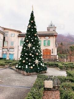 空,冬,屋外,樹木,イルミネーション,クリスマス,クリスマス ツリー