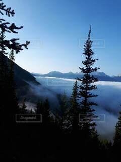 自然,空,絶景,屋外,雲,青空,山,大自然,樹木,雲海,ハイキング,カナダ,カナディアンロッキー,北米,早朝ハイキング