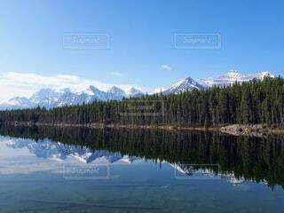 自然,空,雪,屋外,湖,青空,雪山,水面,山,反射,大自然,樹木,リフレクション,ハイキング,カナダ,山脈,カナディアンロッキー,バンフ,北米,レイクビュー,ミラーレイク