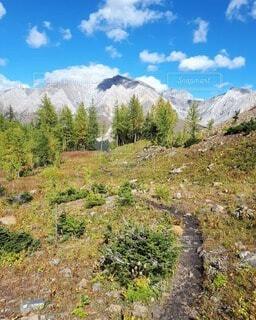 秋のハイキングトレイルの写真・画像素材[4834837]