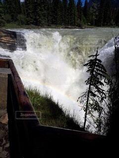 自然,屋外,虹,水面,滝,樹木,ハイキング,カナダ,国立公園,カナディアンロッキー,北米,ジャスパー