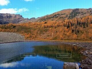 黄葉と湖の写真・画像素材[4928440]