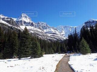 雪山ハイキング出発の写真・画像素材[4948778]