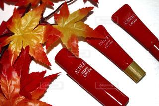 赤と白の花 - No.758242