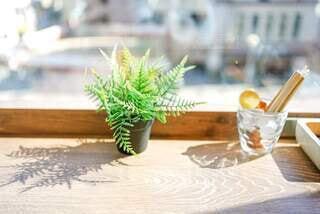 カフェ,花,花瓶,日差し,テーブル,植木鉢,食器,観葉植物,ダイニングテーブル,お洒落カフェ,お洒落