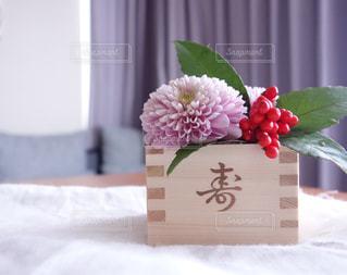 花の写真・画像素材[300362]