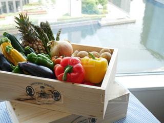 野菜の写真・画像素材[527484]