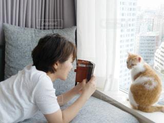 猫を持って少年の写真・画像素材[1255381]