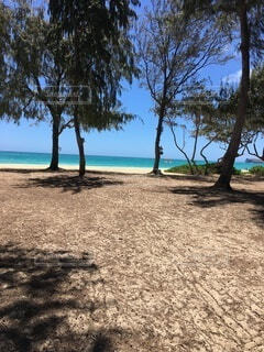 自然,海,空,屋外,エメラルド,島,砂浜,樹木,マリンブルー,リゾート,エメラルドグリーン,草木,アクアブルー