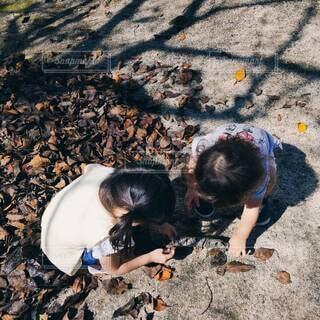 風景,散歩,景色,人物,人,地面,幼児,少年,秋だね