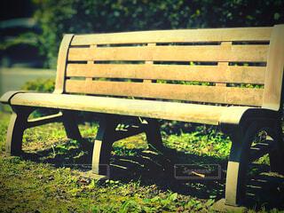 風景,公園,秋,屋外,草原,ベンチ,草,椅子,座る,家具,木目,景観