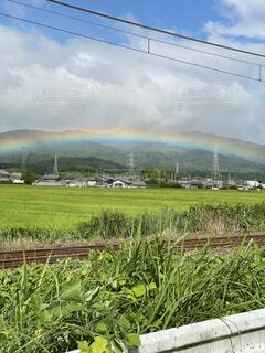 空,屋外,虹,線路,草