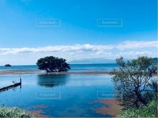 自然,風景,空,屋外,湖,ビーチ,雲,水面,樹木,ヤシの木