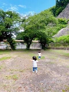 子ども,風景,公園,屋外,草,樹木,人物,人,幼児,双子