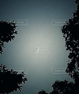 自然,風景,空,屋外,散歩,月