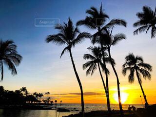 ハワイの夕日の写真・画像素材[4834718]