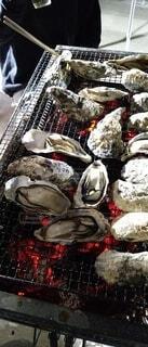 食べ物,食事,アート,季節,フード,牡蠣,バーベキュー,魚介類,飲食