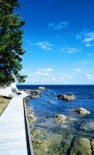 自然,風景,屋外,水面,海岸,樹木,眺め,海 青空 アクティビティ 鷺 岩 浅瀬 橋 雲 九十九湾