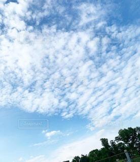 青い空の写真・画像素材[4843436]