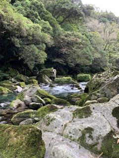 自然,屋外,川,水面,山,滝,樹木,岩
