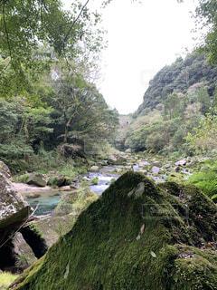 自然,風景,屋外,川,水面,山,滝,樹木,岩,旅行,ジャングル,草木