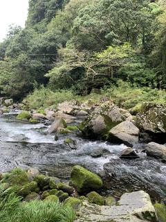 自然,屋外,川,水面,水辺,滝,樹木,岩,運河,川底,クリーク,ストリーム,水資源,アロヨ,河川地形