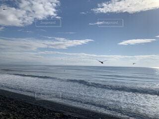 自然,風景,海,空,鳥,屋外,サーフィン,ビーチ,雲,波,水面,海岸