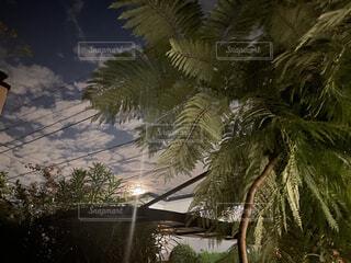 雲を突き抜ける光の写真・画像素材[4872268]
