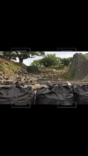 熊本地震の写真・画像素材[824299]