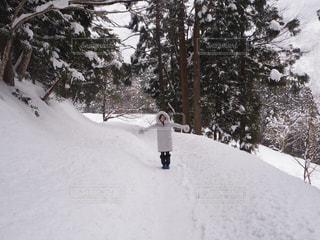 雪に覆われた斜面をスキーに乗る男 - No.913826