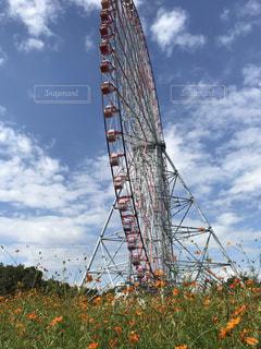 雲,青空,観覧車,日差し,オレンジの花,秋空