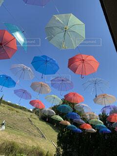 自然,空,アクセサリー,雨,傘,屋外,草,開く