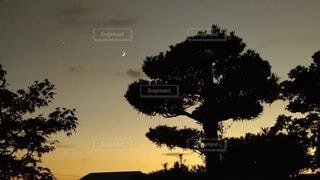 夕焼けと三日月の写真・画像素材[4912782]