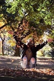 落葉遊びの写真・画像素材[4862545]
