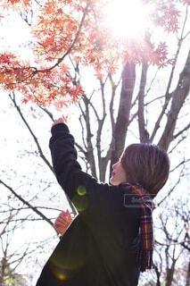 女性,自然,風景,空,秋,紅葉,屋外,散歩,樹木,人物,人,ライフスタイル,散策