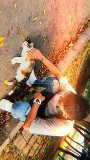 猫と戯れるの写真・画像素材[4865908]