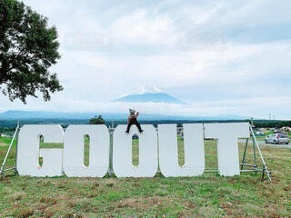 空,富士山,屋外,雲,山,草,キャンプ