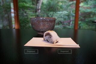 和菓子の写真・画像素材[4868896]