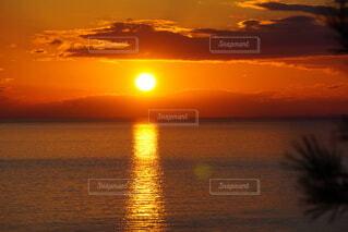 うっとり夕焼けの写真・画像素材[4869898]