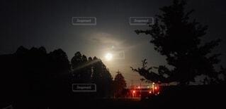 暗闇の中の信号機の写真・画像素材[4874519]