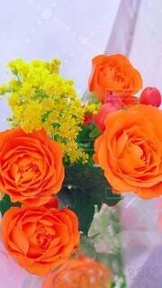 花束の写真・画像素材[4876193]