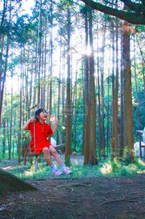 森のブランコの写真・画像素材[2211139]