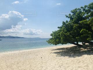 青い海と空に囲まれた海外ビーチリゾートで理想的な旅行を。の写真・画像素材[4866256]
