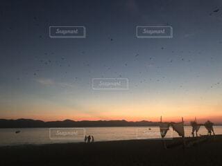 鳥が飛ぶビーチリゾートの夕暮れの写真・画像素材[4871597]