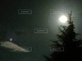 自然,風景,空,暗い,霧,樹木,月,月  雲